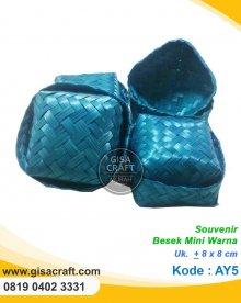 Souvenir Besek Mini Warna AY5